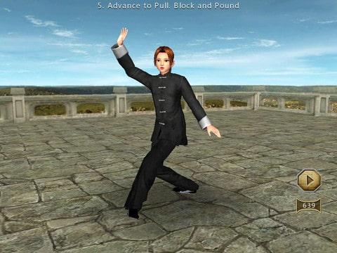 3D Interactive Tai Chi