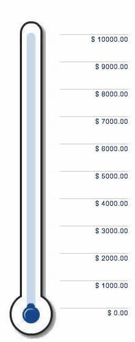 Fundraising Thermometer plugins crowdfunding recaudar fondos wordpress