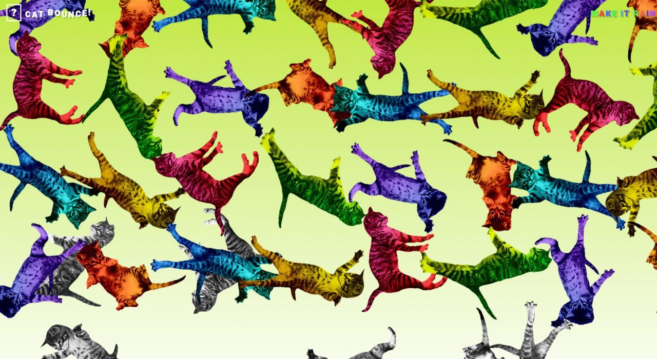 Cat Bounce: sitio web de risas
