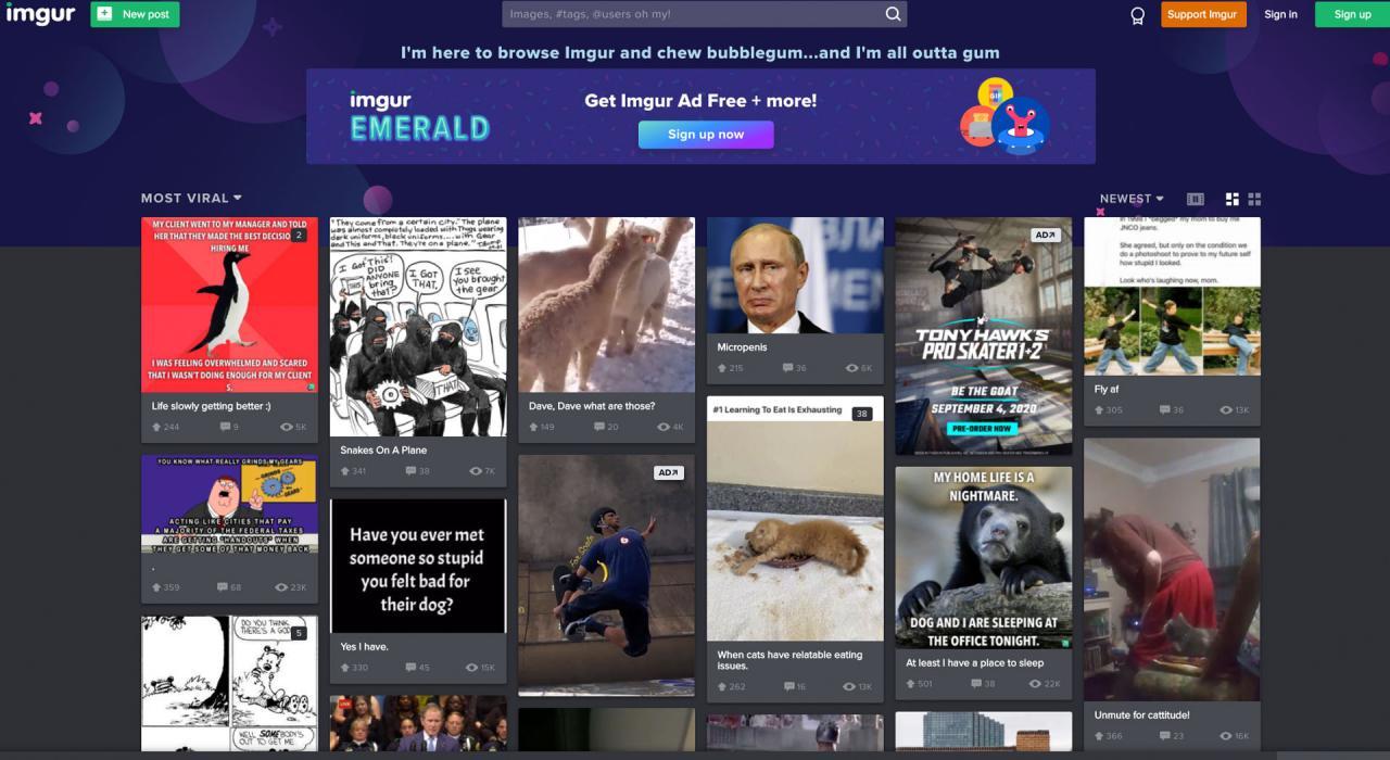 Imgur: sitios web divertidos para el aburrimiento